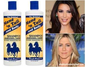 agen-shampo-kuda-original-jakarta